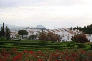 Detalles  y plantaciones