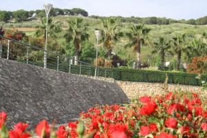 Detalles  constructivos y plantaciones